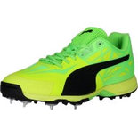 PT03 Puma Cricket Shoes sports shoes india